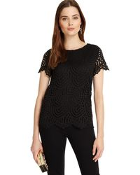 Phase Eight - Black Tessa Lace Top - Lyst