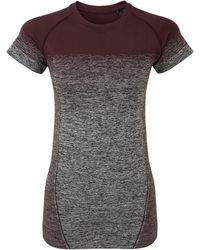 Tog 24 Dark Brown Deep Port Gradient Nada Seamless Performance T-shirt
