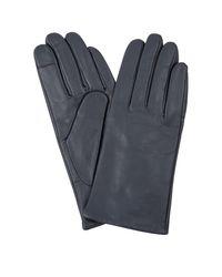 Hobbs 'emma' Gloves - Blue
