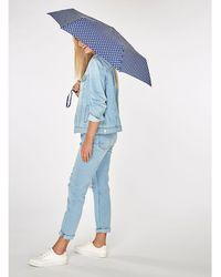 Dorothy Perkins - Navy Spotted Umbrella - Lyst
