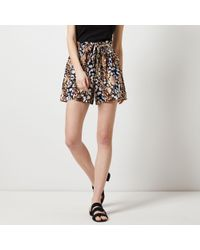 Dorothy Perkins - Multi Colour Animal Print Shorts - Lyst