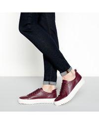 J By Jasper Conran - Wine Red Flatform Cleated Heel Trainers - Lyst