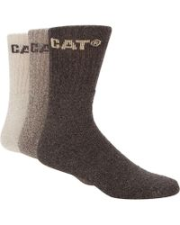 Caterpillar - Pack Of Three Natural And Brown Boot Socks - Lyst
