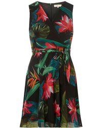 Dorothy Perkins - Billie & Blossom Petite Tropical Print Short Skater Dress - Lyst