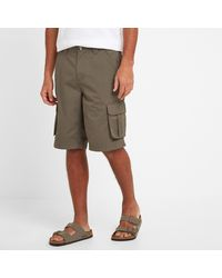 Tog 24 Oyster Farrow Cargo Shorts - Multicolour