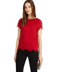 Phase Eight - Sangria Tessa Lace Top - Lyst