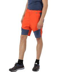 Regatta - Orange 'sungari' Shorts - Lyst