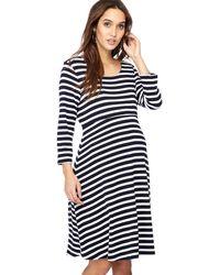 Red Herring - Navy Stripe Print Knee Length Maternity Skater Dress - Lyst