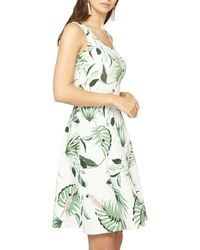 Dorothy Perkins - Tall Ivory Parrot Fit And Flare Dress - Lyst