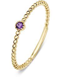 Diamond Point Geelgouden Ring 0-04 Ct Paarse Amethist Joy - Metallic