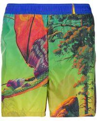 Valentino Dragon At Dawn Print Swim Shorts - Green