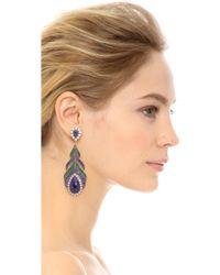 Jarin K - Feather Earrings - Lyst