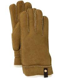 UGG Sheepskin Tenney Glove - Brown