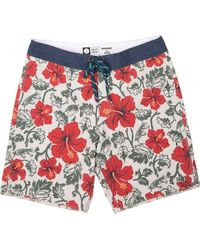 Salty Crew Hooked Floral Board Shorts - Multicolor