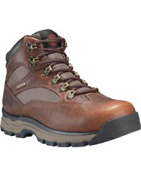 Timberland Chocorua Trail 2.0 Mid Gore-tex Hiking Boots - Brown