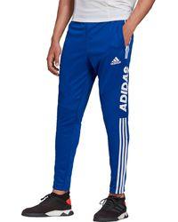 adidas Tiro 19 Wordmark Training Pants - Blue