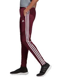 adidas Tiro 19 Training Pants - Red
