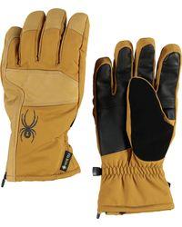Spyder Adult B. A. Gtx Ski Gloves - Multicolor