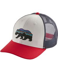 Patagonia Fitz Roy Bear Trucker Hat - White