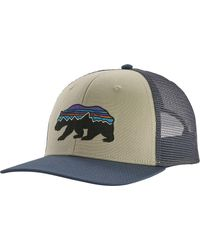 Patagonia Fitz Roy Bear Trucker Hat - Multicolor