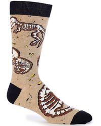 K. Bell - Novelty Dino Bones Crew Socks - Lyst