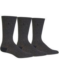 Polo Ralph Lauren - Big & Tall Supersoft Ragg Crew Socks 3-pack - Lyst