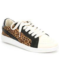 Dolce Vita - Nino Leopard Print Calf Hair Sneakers - Lyst
