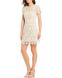 Eliza J - Lace Fit And Flare Dress - Lyst