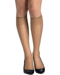 Hanes 6-pack Silk Reflection Sheer Toe Knee Highs - Multicolour