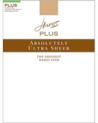 Hanes Plus Sheer Control Top Pantyhose - Multicolour