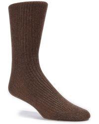 Cremieux Flat Knit Crew Dress Socks - Brown