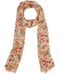 Patricia Nash Prairie Rose Collection Scarf - Pink