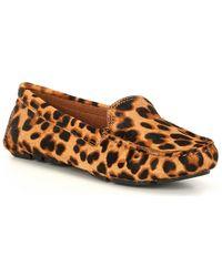 Antonio Melani Colbert Leopard Print Calf Hair Moccasins - Brown