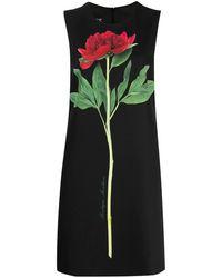 Boutique Moschino Sleeveless Flower-print Shift Dress - Black