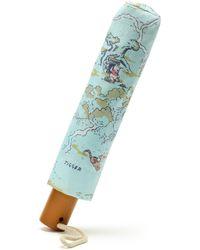 Disney Winnie The Pooh Umbrella - Green