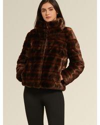 DKNY Donna Karan Standing Collar Short Faux Mink Coat - Brown