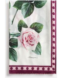 Dolce & Gabbana Tropical Rose Print Cashmere And Modal Scarf 135 X 200 - Multicolour