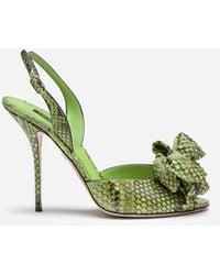 Dolce & Gabbana Sandals In Python With Bow - Vert
