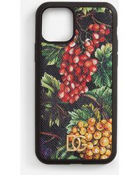 Dolce & Gabbana Iphone 11 Pro Case With Grape Print On A Black Background In Dauphine Calfskin - Multicolore