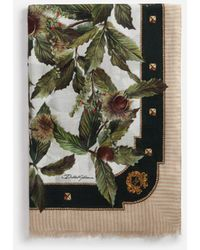 Dolce & Gabbana Modal And Cashmere Scarf With Chestnut Print: 135 X 200Cm- 53 X 78 Inches - Vert