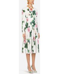 Dolce & Gabbana Cady Fabric Longuette Dress In Tropical Rose Print - Green