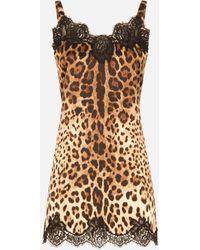 Dolce & Gabbana Satin Lingerie Slip With Leopard-print Lace - Multicolour