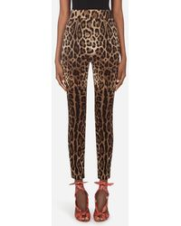 Dolce & Gabbana Leggings In Charmeuse With Leopard Print - Mehrfarbig