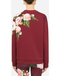 Dolce & Gabbana Jersey Sweatshirt With Camellia Details - Red
