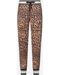 Dolce & Gabbana Jersey jogging Trousers With Leopard Print - Multicolour