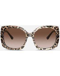 Dolce & Gabbana Sonnenbrille Print Family - Mehrfarbig