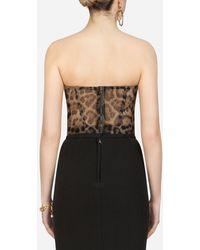 Dolce & Gabbana Leopard-print Cotton-tulle Bustier Top - Multicolour