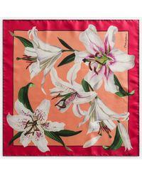 Dolce & Gabbana Lily-print Twill Scarf (50 X 50)