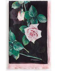 Dolce & Gabbana Tropical Rose Print Silk Scarf 120 X 200 - Multicolor