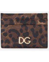 Dolce & Gabbana Leopard Print Dauphine Calfskin Card Holder - Brown